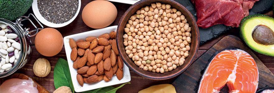 Aliment protéine